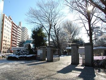 Shinjyuku Garden Snow (1)_S.JPG