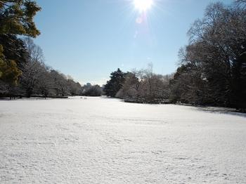 Shinjyuku Garden Snow (3)_S.JPG